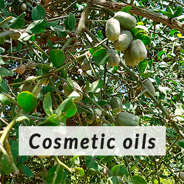 Cosmetic oils